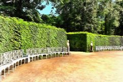Beaux buissons pittoresques dans Catherine Park illustration stock
