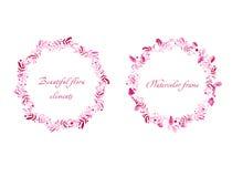 Beaux cadres ronds roses de framboise et de feuilles Photographie stock