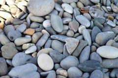 Beaux cailloux multicolores sur la plage Photographie stock libre de droits