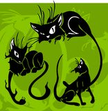 Beaux chats. illustration stock
