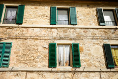 Beaux chats dans Montalcino, Toscane Photo stock