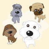 Beaux chiens Images libres de droits