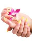 Beaux clous et doigts Image stock