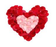 Beaux coeurs des pétales de rose rouges et roses d'isolement sur le blanc Images stock