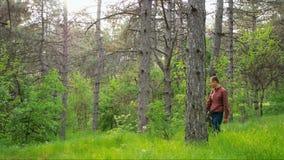 Beaux couples élégants dans l'amour, marchant dans le bois, date romantique Tir large clips vidéos