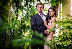 Beaux couples Images stock
