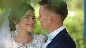 Beaux couples affectueux se tenant embrassants et étreignants dans le domaine banque de vidéos