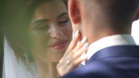 Beaux couples affectueux se tenant embrassants et étreignants dans le domaine clips vidéos