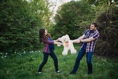 Beaux couples de femme enceinte et d'homme dans l'amour Photographie stock libre de droits