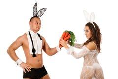 Beaux couples de lapin Image libre de droits