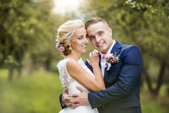 Beaux couples de mariage Images stock
