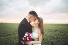 Beaux couples de mariage, amour sur le coucher du soleil Fielf avec des fleurs Image stock