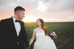 Beaux couples de mariage, amour sur le coucher du soleil Fielf avec des fleurs Images stock