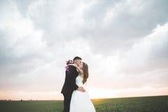 Beaux couples de mariage, amour sur le coucher du soleil Fielf avec des fleurs Photographie stock libre de droits