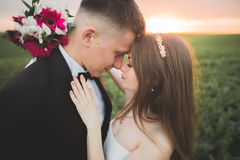 Beaux couples de mariage, amour sur le coucher du soleil Fielf avec des fleurs Image libre de droits