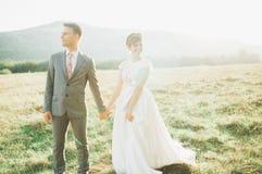 Beaux couples de mariage, amour sur le coucher du soleil Fielf avec la vue sur des montagnes Photos stock