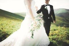 Beaux couples de mariage, jeunes mariés, dans l'amour sur le fond des montagnes Photos libres de droits