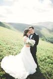 Beaux couples de mariage, jeunes mariés, dans l'amour sur le fond des montagnes Photos stock