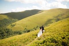 Beaux couples de mariage, jeunes mariés, dans l'amour sur le fond des montagnes Photographie stock