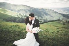Beaux couples de mariage, jeunes mariés, dans l'amour sur le fond des montagnes Images stock