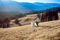 Beaux couples de mariage marchant sur le champ et le sourire Lune de miel dans les Alpes Images stock