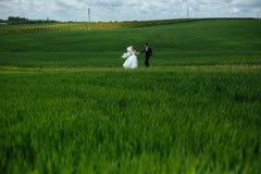 Beaux couples de mariage sur la nature Photographie stock