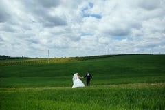 Beaux couples de mariage sur la nature Photos stock