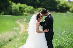 Beaux couples de mariage sur la nature Images libres de droits