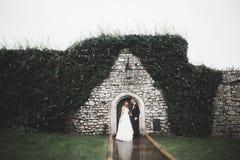 Beaux couples heureux de mariage, jeune mariée avec la longue robe blanche image libre de droits