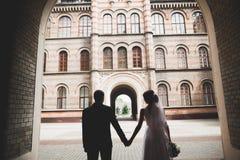 Beaux couples heureux de mariage, jeune mari?e avec la longue robe blanche photo libre de droits
