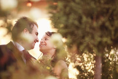 Beaux couples heureux en nature Images libres de droits