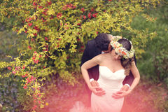 Beaux couples nuptiales Photo stock