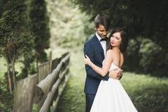 Beaux couples posant en parc Nouveaux mariés de lune de miel dans l'amour tenant des mains Photos stock