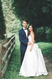 Beaux couples posant en parc Nouveaux mariés de lune de miel dans l'amour tenant des mains Photographie stock