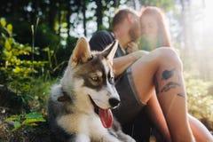 Beaux couples se reposant dans la forêt Image libre de droits