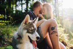 Beaux couples se reposant dans la forêt Photos libres de droits
