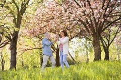 Beaux couples supérieurs en nature d'extérieur d'amour au printemps Images stock