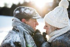 Beaux couples supérieurs sur une promenade en nature ensoleillée d'hiver photographie stock libre de droits