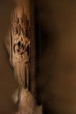 Beaux découpages d'Apsara Image libre de droits