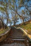 Beaux escaliers en pierre Images libres de droits