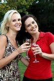Beaux femmes buvant du vin à l'extérieur Photographie stock libre de droits