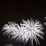 Beaux feux d'artifice sur le ciel nocturne Images libres de droits