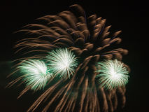 Beaux feux d'artifice verts Photo libre de droits