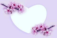 Beaux fleur et coeur de brindille de fleur de cerise sur le fond rose-clair r Descripteur de carte de voeux Nature de source cop Image stock