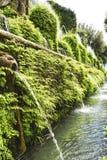 """Beaux fontaines et jets d'eau en vert des jardins célèbres de la villa D """"Este Tivoli, Italie photos stock"""