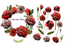 Beaux invitation et éléments de mariage avec Photo stock