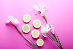 Beaux iris avec des tranches de citron sur le fond rose Image libre de droits