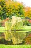 Beaux jardins Image libre de droits