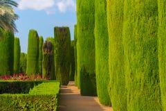 Beaux jardins, Cordoue Photos libres de droits