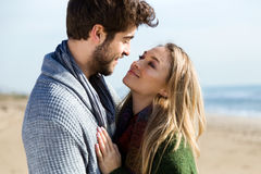 Beaux jeunes couples dans l'amour en hiver froid sur la plage Photo libre de droits